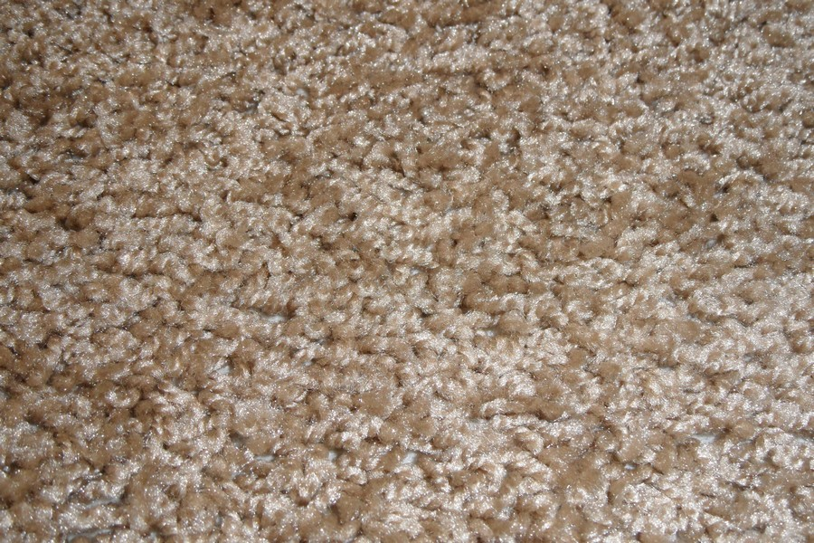 Carpet Item Two