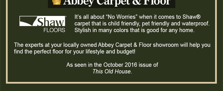 "It's all about ""No Worries"" when it comes to Shaw® carpet that is child friendly, pet friendly and waterproof. Stylish in many colors that is good for any home."