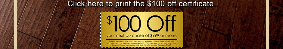 Click here to print the $100 off certificate.